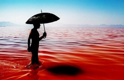 Giải mã hiện tượng nước biển xanh bỗng chốc 'đỏ như máu'