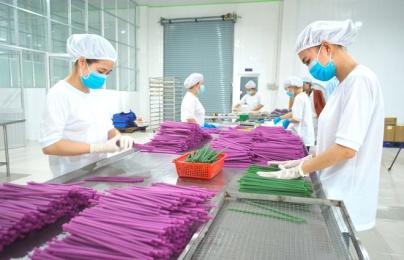 Ống hút làm từ bột gạo, bột sắn của Việt Nam đắt khách tại châu Âu