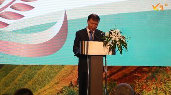 Xuất khẩu gạo Việt chuyển mạnh theo hướng nâng cao giá trị gia tăng