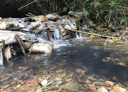 Nhà máy nước Sông Đà xử lý nước đầu vào như thế nào?