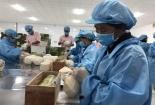 Phục hồi sản xuất để thúc đẩy xuất khẩu nông sản những tháng cuối năm