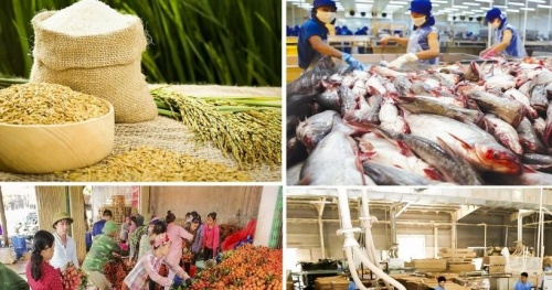 Agriculture sector – 6 commodity groups with an export turnover of over 2 billion USD