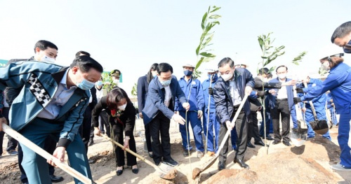 Hanoi strives to plant a tree for each person