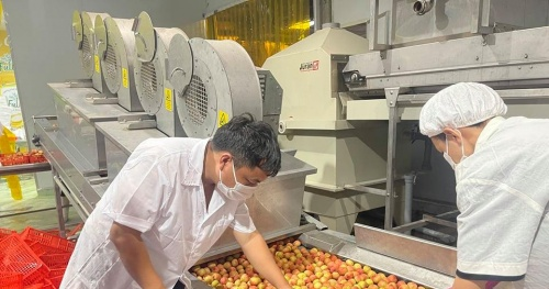 The Ministry of Industry and Trade connects the consumption of agricultural products and supplies essential goods to Bac Giang